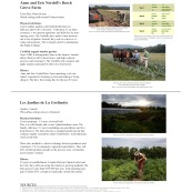 urban-ag-types-precedents_page_08