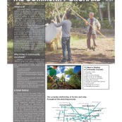 urban-ag-types-precedents_page_09