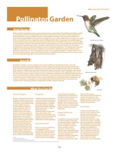 urban-ag-types-precedents_page_13