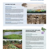 urban-ag-types-precedents_page_24