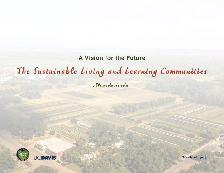 SLLC Vision Plan